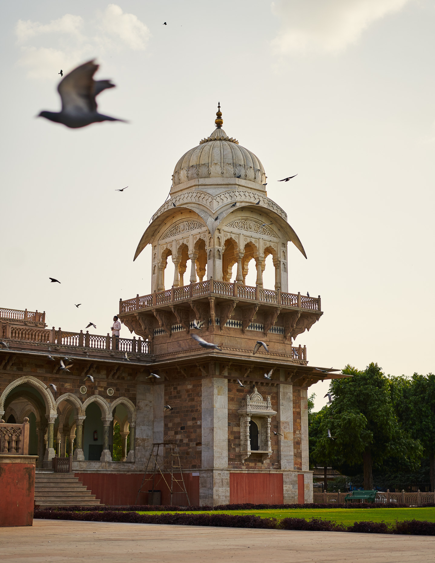 Personal_India_jaipur__DSC2318cropped-47